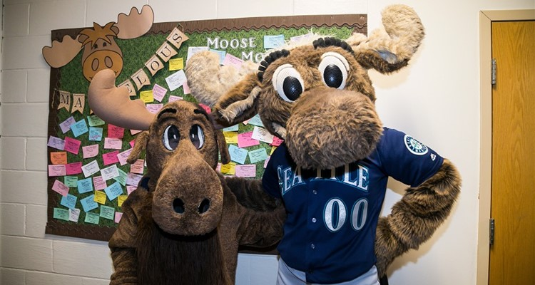 MTE Moose & and Seattle Mariners Moose