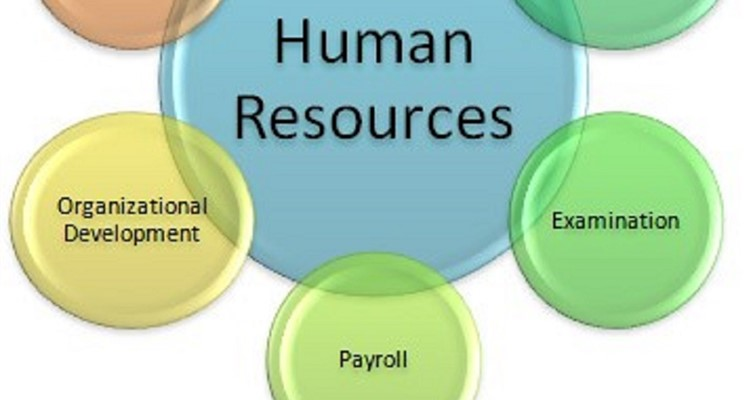 Picture of human resource chart